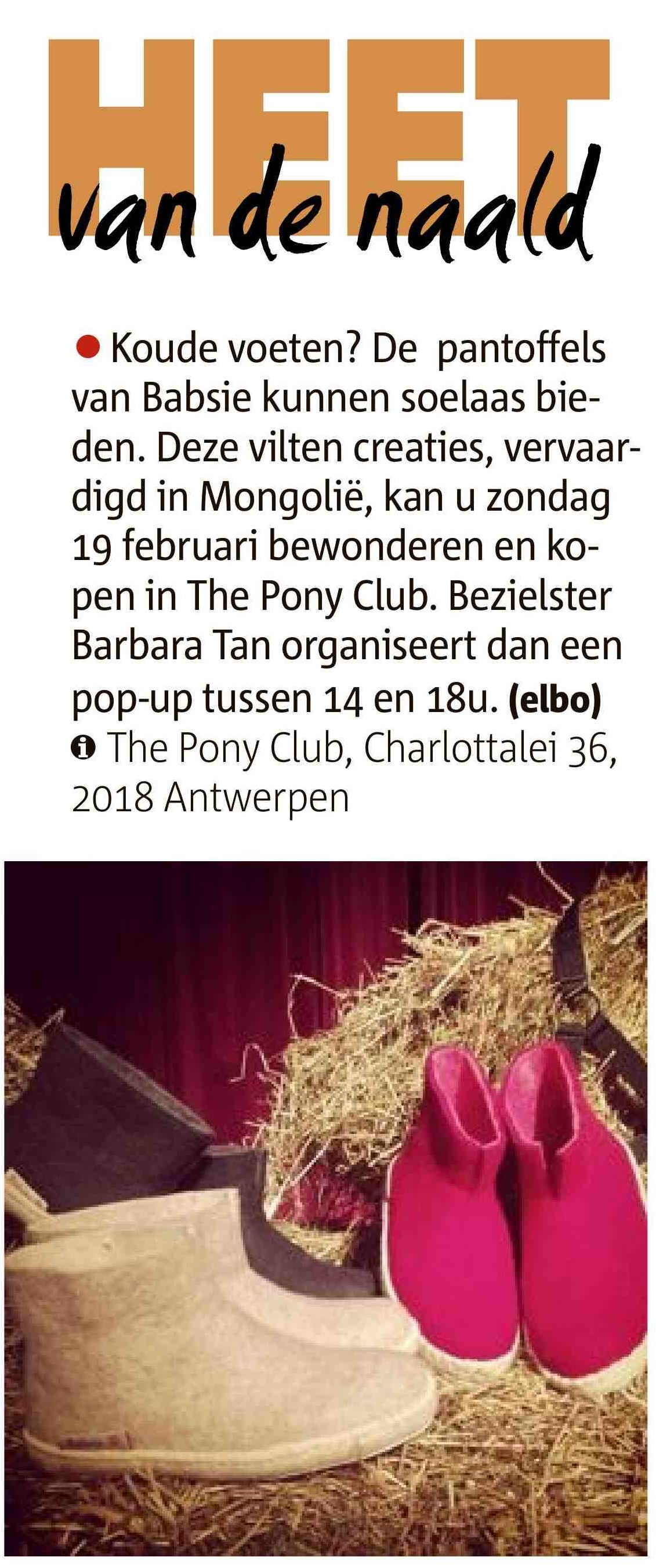 Babsie POP UP Pony Club